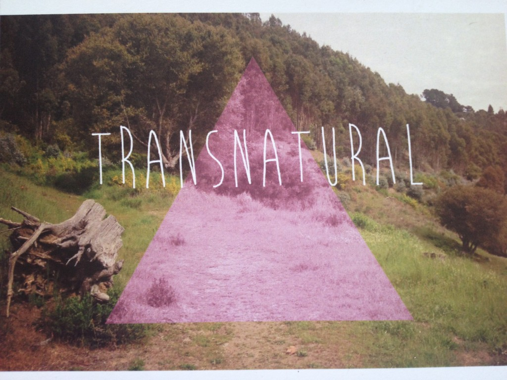 TransNatural Workshop